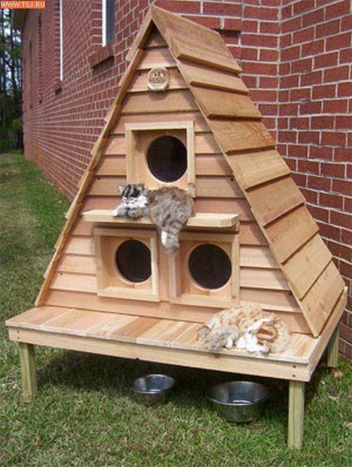 Домик для кошек своими руками уличный